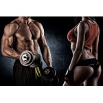Cycle for muscle mass and strength (Advanced)