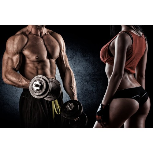 Cycle for muscle mass and strength (beginners)
